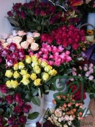 Róże w Naszej Kwiaciarni