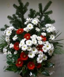 Bukiet pogrzebowy Margaretka i Gerbera